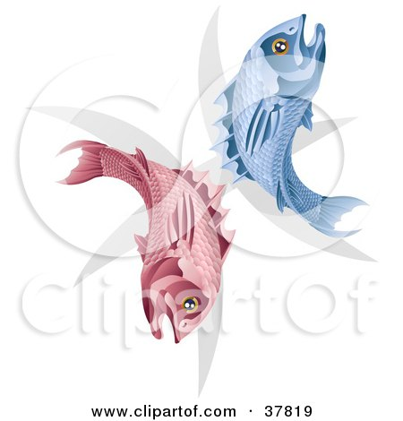 Clipart Illustration of Pink And Blue Pisces Fish With The Zodiac Symbol by AtStockIllustration