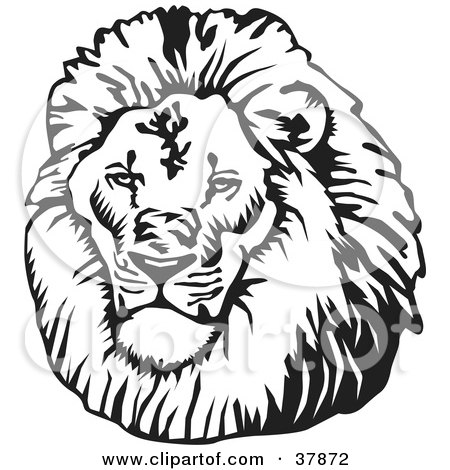 Royalty-free animal clipart picture of a black and white male lion head,