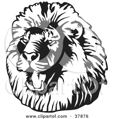 Clipart Illustration of a Black And White Roaring Male Lion Head by David Rey