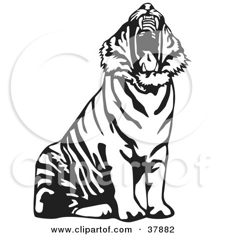 Clipart Illustration of a Yawning Black And White Tiger by David Rey