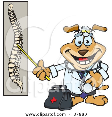 Clipart Illustration of a Chiropractor Dog With A Head Lamp And Medical Bag, Pointing To A Diaphram Of A Spine by Dennis Holmes Designs