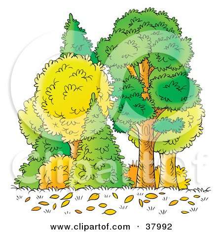 Clipart Illustration of Autumn Leaves On The Ground In Front Of Trees In The Forest by Alex Bannykh