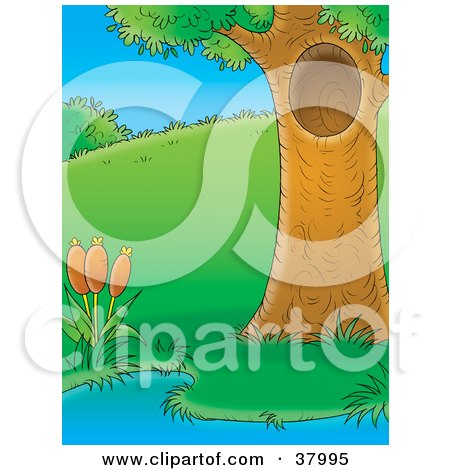 Clipart Illustration of a Mature Tree With A Hole, Beside A Pond With Cattails by Alex Bannykh