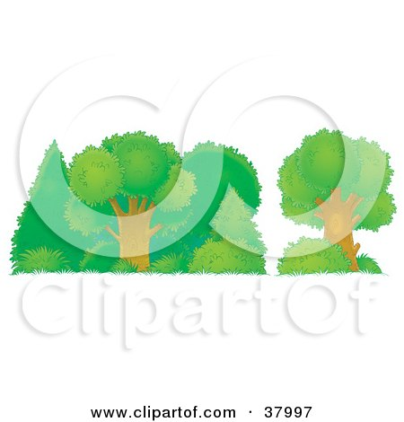 Clipart Illustration of Healthy Green Trees, Shrubs And Bushes In A Forest by Alex Bannykh