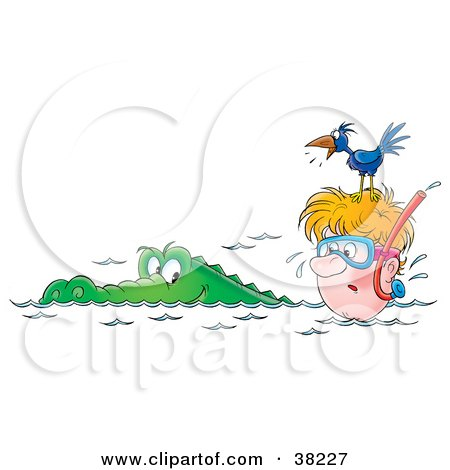 Clipart Illustration of a Bird On Top Of A Snorkeler's Head, Squawking At An Alligator by Alex Bannykh