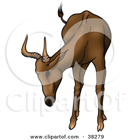 Clipart Illustration of a Curious Brown Antelope With Short Antlers by dero