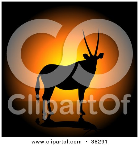 Clipart Illustration of a Male Antelope With Straight Horns, Silhouetted Against An Orange Sunset by dero