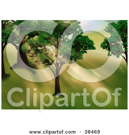 Clipart Illustration of Orange Morning Sunlight Shining Through The Leaves And Branches Of Trees On A Hillside by dero