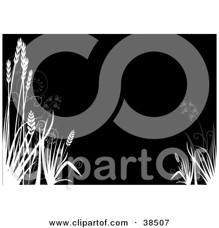 Clipart Illustration of White Silhouetted Reeds Over A Black Background by dero