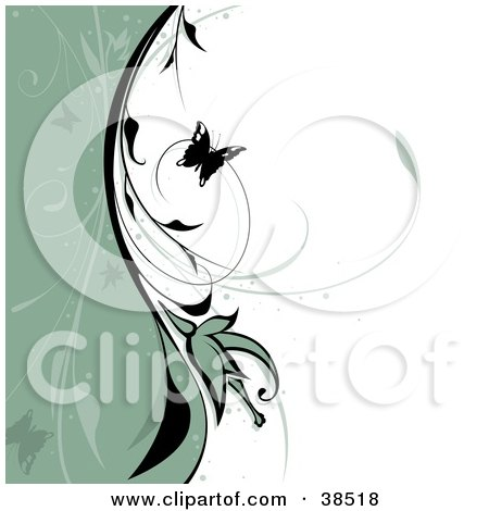 Clipart Illustration of a Black Butterfly And Vine Dividing A Wave Of Sage Green And White Background by dero