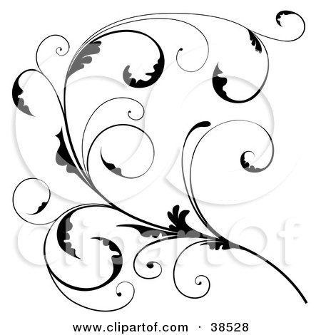 Clipart Illustration of a Delicate Black Floral Scroll Branch With Tendrils And Curly Leaves by dero