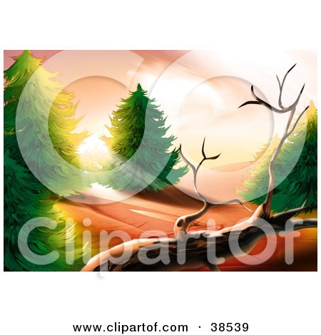 Clipart Illustration of Morning Sunlight Shining Between Forest Trees, Onto A Dead Tree by dero