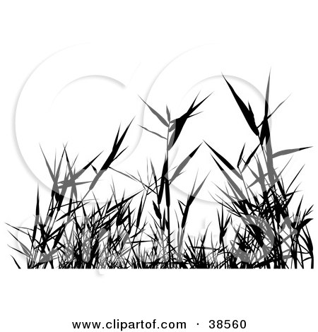 Clipart Illustration Of Black Silhouetted Grass Weeds By