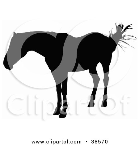 Clipart Illustration of a Horse Swishing Its Tail And Silhouetted In Black by dero