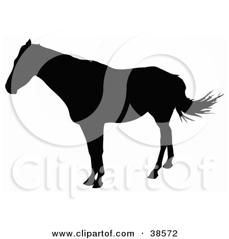 Clipart Illustration of a Horse Standing And Silhouetted In Black by dero