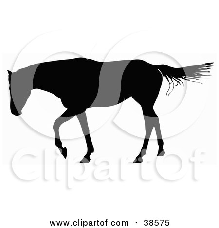 Clipart Illustration of a Horse Walking And Silhouetted In Black by dero