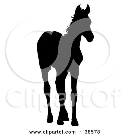 Clipart Illustration of a Black Silhouetted Foal Standing by dero