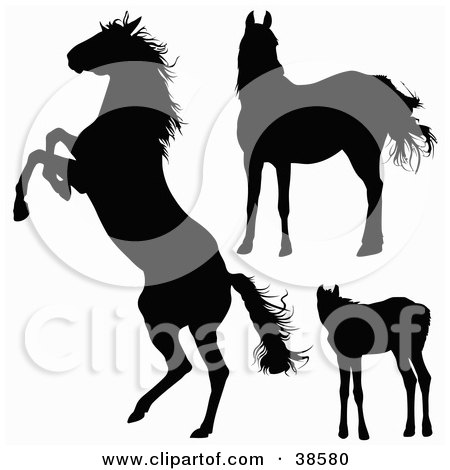 Clipart Illustration of Silhouetted Horses Rearing and Standing by dero