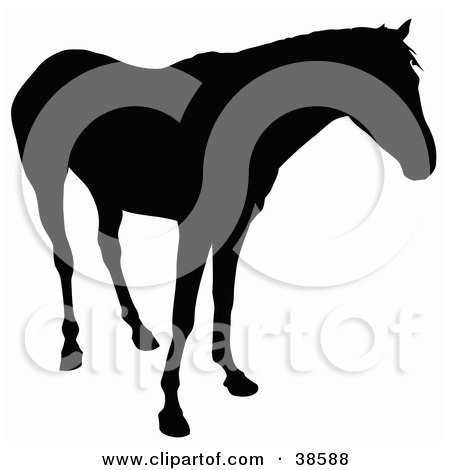 Clipart Illustration of a Horse Silhouetted In Black And Standing by dero
