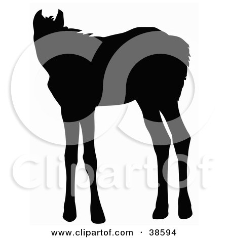 Clipart Illustration of a Black Silhouette Of A Standing Foal by dero