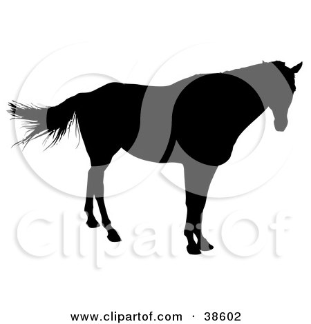 Clipart Illustration of a Lone Horse Silhouetted In Black by dero