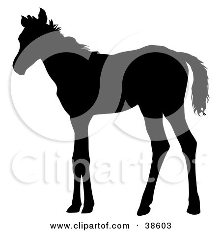 Clipart Illustration of a Black Silhouette Of A Skinny Foal by dero