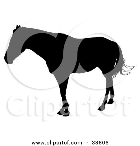Clipart Illustration of a Black Silhouetted Horse Swishing Its Tail by dero