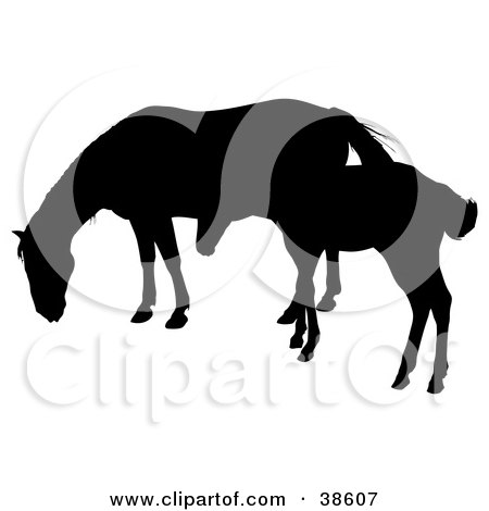 Clipart Illustration of a Silhouette Of A Foal Beside Its Mother by dero