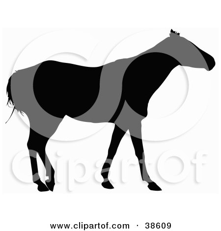 Clipart Illustration of a Side View Of A Horse Silhouetted In Black by dero