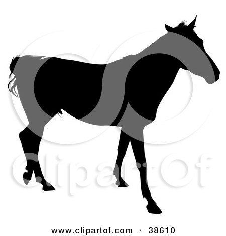 Clipart Illustration of a Walking Horse Silhouetted In Black by dero