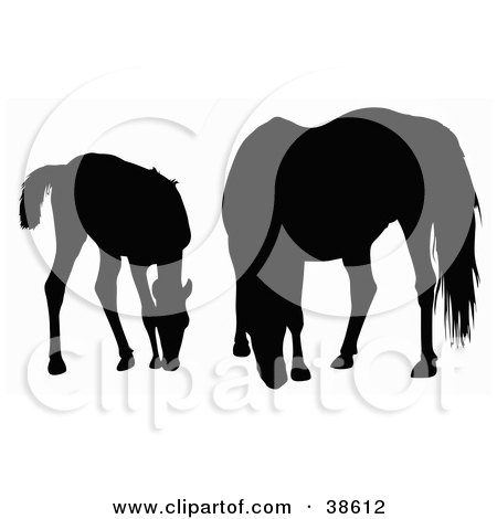 Clipart Illustration of a Silhouette Of A Foal And Horse Grazing by dero