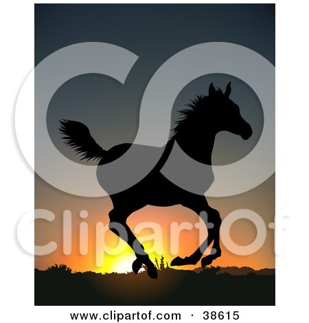 Clipart Illustration of a Wild Running Horse, Silhouetted Against An Orange Sunrise by dero