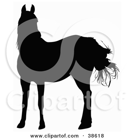 Clipart Illustration of a Black Silhouette Of A Horse In The Wind by dero