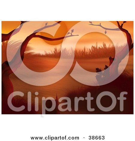 Clipart Illustration of Bare Tree Branches Framing A Scene Under A Red Sunset by dero