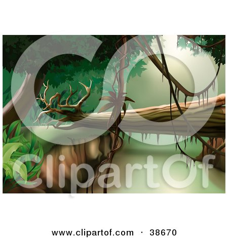 Clipart Illustration of a Fallen Tree Spanning Between Cliffs In A Jungle by dero
