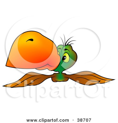 Clipart Illustration of a Brown And Green Parrot With An Orange Beak, Flying Forward by dero