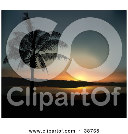 Clipart Illustration of a Blue And Orange Coastal Sunset And A Silhouetted Palm Tree by dero