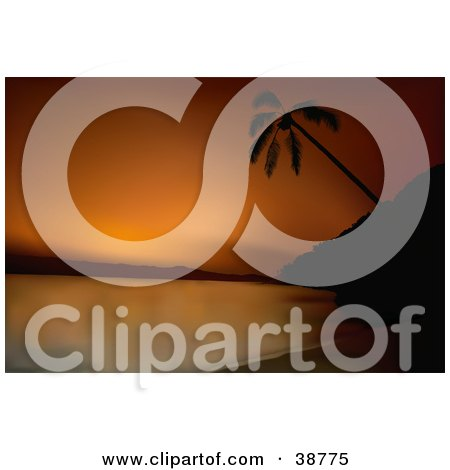 Clipart Illustration of an Orange Sunset Silhouetting A Palm Tree On A Beach by dero