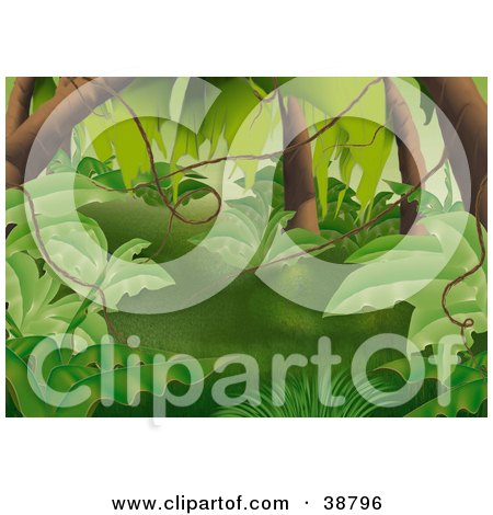 Clipart Illustration of a Lush Green Forest With Leafy Plants, Tree Trunks And Vines by dero