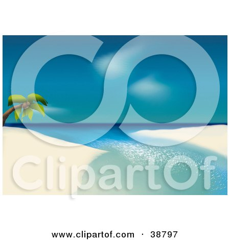 Clipart Illustration of a Lone Coconut Palm Tree Leaning Over Water On A White Sandy Tropical Beach by dero