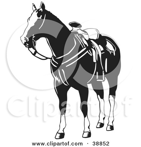 Clipart Illustration of a Black And White Saddled Horse by David Rey