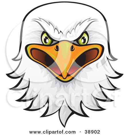 Royalty-Free (RF) Eagle Head Clipart, Illustrations, Vector ...