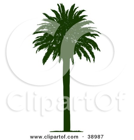 Clipart Illustration of a Straight And Tall Silhouetted Coconut Palm Tree by Tonis Pan
