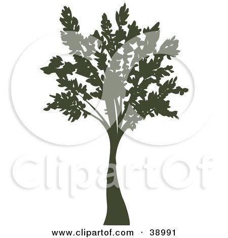 Clipart Illustration of a Tall Mature Silhouetted Tree by Tonis Pan