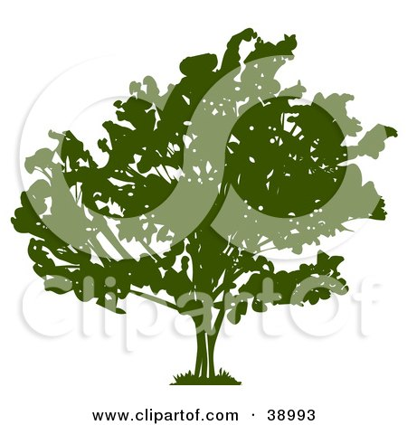 Clipart Illustration of a Wide Green Silhouetted Tree With Thick Foliage by Tonis Pan