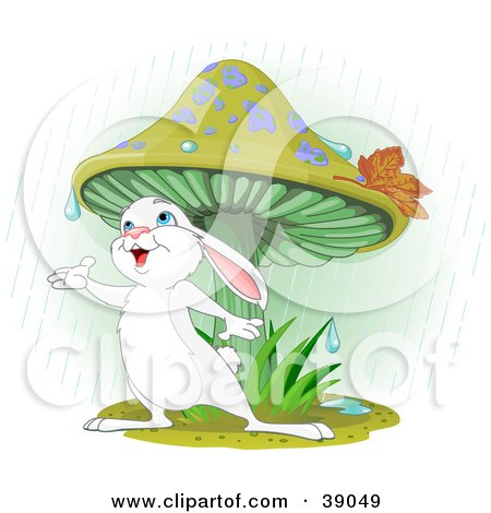 Clipart Illustration of a Wild White Bunny Rabbit Standing Under A Mushroom, Reaching Out To Catch Rain Drops In His Hand by Pushkin