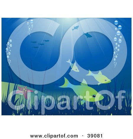 Clipart Illustration of an Underwater Scene With Fish, Bubbles, Plants And Starfish by elaineitalia