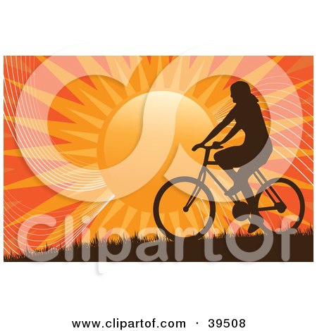 Silhouetted Woman Riding A Bicycle On A Hill Against An Orange Sunset Posters, Art Prints