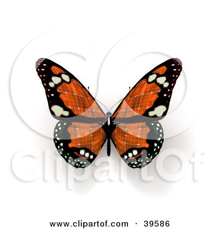 Clipart Illustration of an Orange Solar Panel Butterfly by Frank Boston
