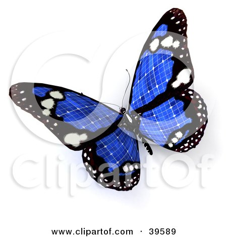 Blue Solar Panel Butterfly Posters, Art Prints